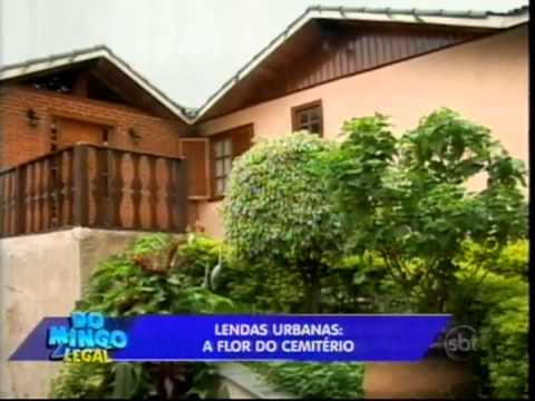 Domingo Legal - Lendas Urbanas: A Flor do Cemitério