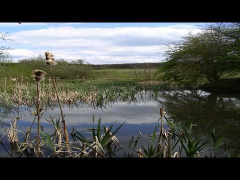 Brigstock Country Park Huntingdon Cambridgeshire