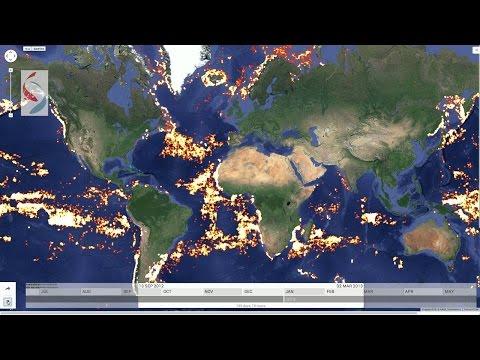 Global Fishing Watch | Technology Illuminating the Global Fishing Fleet