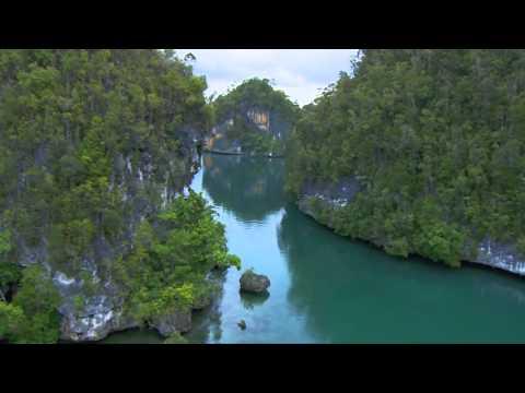 Marine protected areas - excerpt Planet Ocean the movie