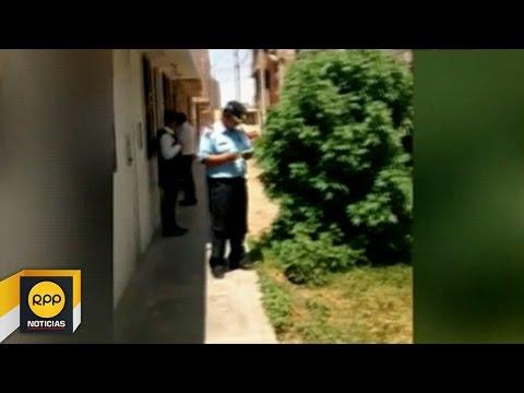 Trujillo: Incautan plantón de marihuana sembrado en la calle│RPP