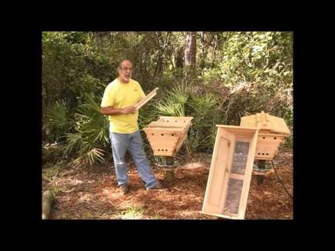 Top Bar Hive Basics