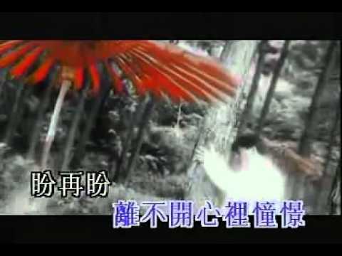 Lưu Đức Hoa - Cuộc tình vạn dặm