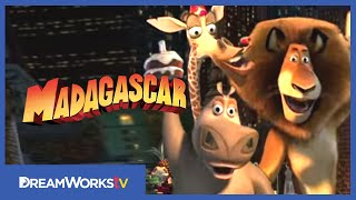 "DreamWorks Animation's ""Madagascar"""