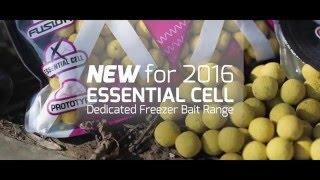 Puść film Mainline Baits TV - NEW For 2016  Essential Cell Dedicated Freezer Bait Range