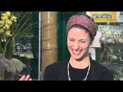 Entrevista com Carina Boniatti