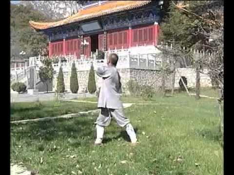 Chi kung : yi jin jing  del Monje Shaolin bodhidharma