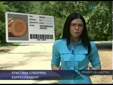 ЧИПИЗАЦИЯ ЛЕСА (ДРЕВЕСИНЫ). УКРАИНА.