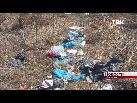 «Успеть до новой травы». В Искитиме убирают мусор