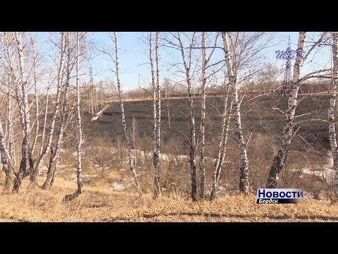 В Бердске зафиксированы первые случаи возгорания сухой травы