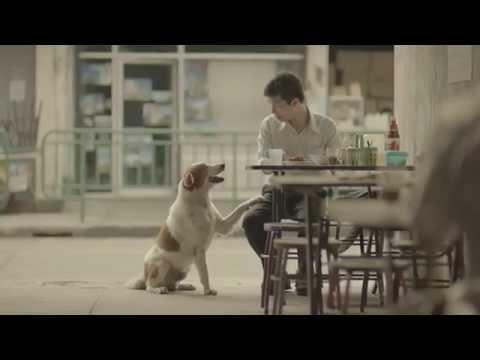 Quảng cáo Thái Lan xúc động - TVC Thai Life Insurance 2014