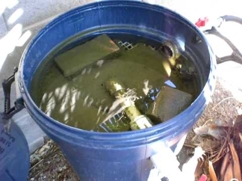 Pond homemade bio filter part 5 youtube for Homemade biofilter for duck pond