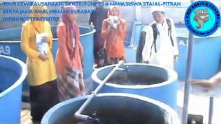 FISH BOSTER CENTRE