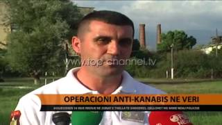Operacioni antikanabis n Veri  Top Channel Albania  News  L