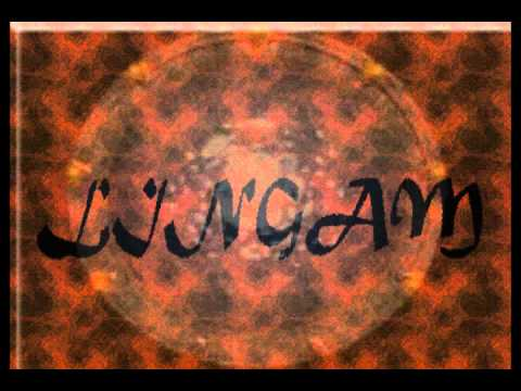 LINGAM - Sin Ti (cover).wmv