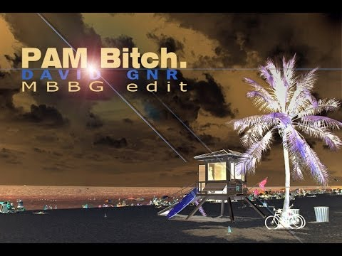 David GNR - PAM Bitch (MBBG edit)