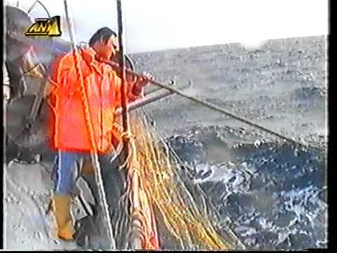 Ψάρεμα στους Πεταλιούς.mpg