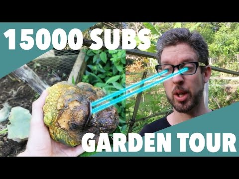 The 15000 Subscriber Garden Tour, Complete with Ridiculous Thumbnail Image!