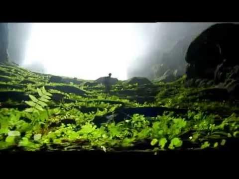 [Người Việt] - Cánh rừng kỳ diệu trong hang Sơn Đoong - BBC (Vietsub)