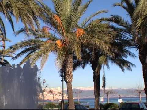 Antibes Travel 2