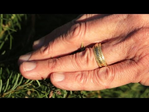 Wedding ring found at tree farm becomes a special Christmas gift