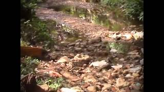 TEASER - disputa pela �gua em Minas