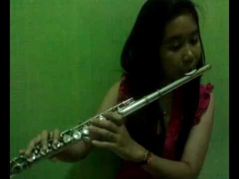 Buko Flute Cover