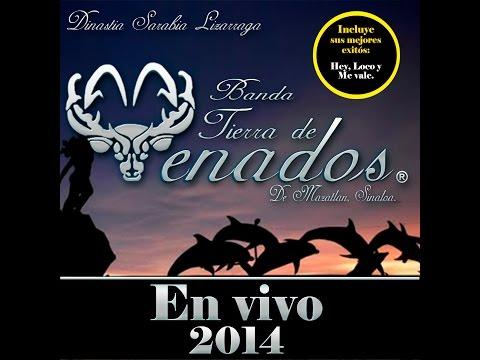 Banda Tierra de Venados - CD En Vivo 2014 completo