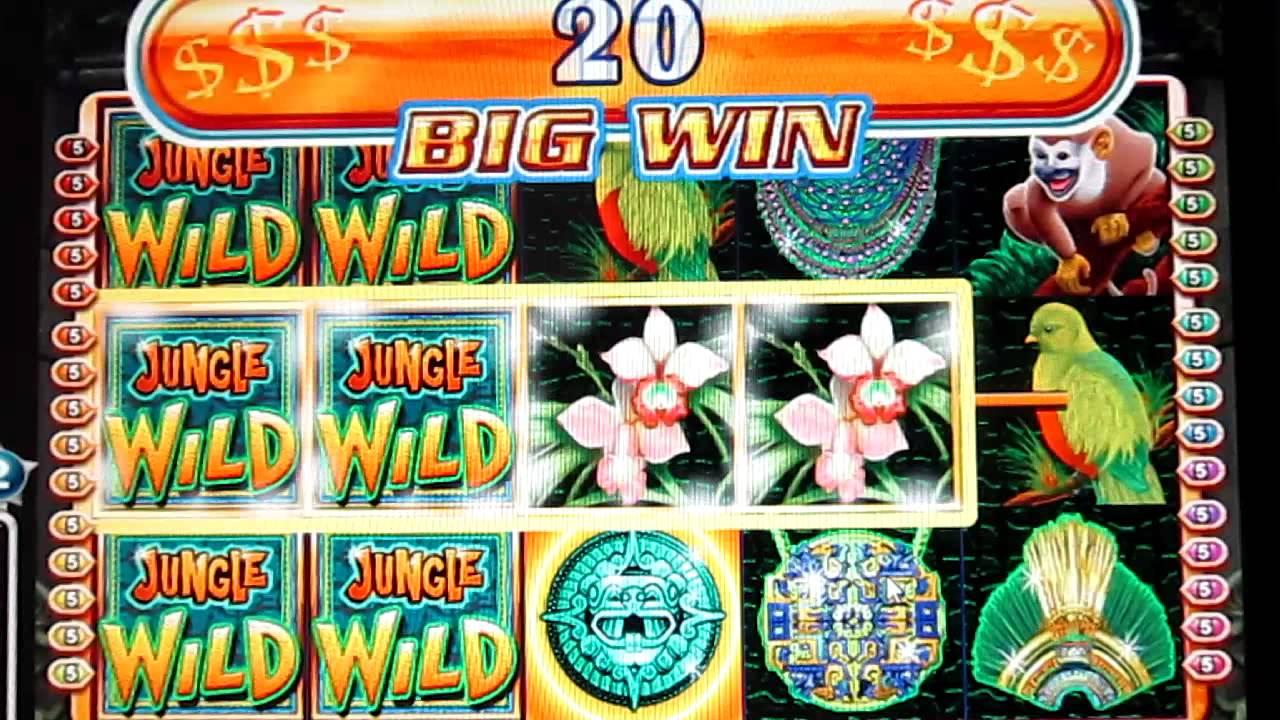 play jungle wild 2 slots online