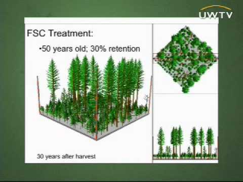 The Future of Forestry: Future Forest Management in the Pacific Northwest