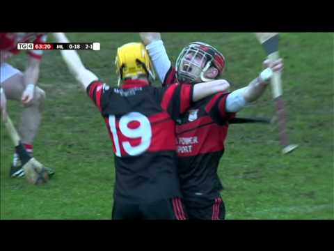 Mount Leinster Rangers Hurling Celebrations - February 8 2014 - Club Hurling Semi-Final