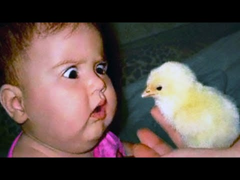 Funny Babies and Kids Trolled by Animals #2