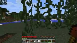Minecraft 1.2.5 Como Instalar CACA MOD! Tutorial En
