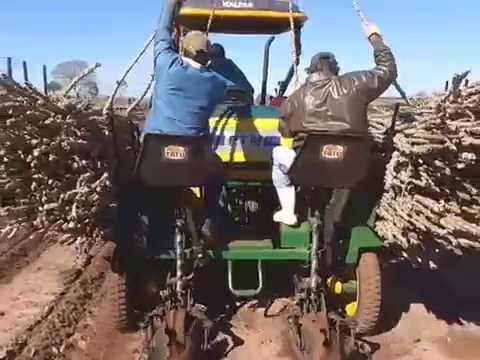 Plantio Mecanizado de rama de mandioca / Mechanized Planting Cassava
