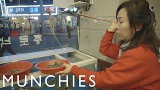 Makan gurita menta - mentah