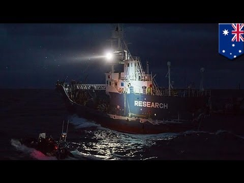 Sea Shepherd claims attack by Japanese whalers