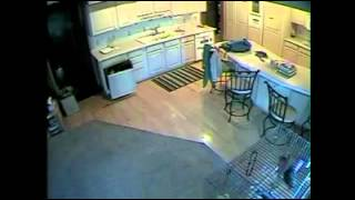 [Ghost caught on home securty camera???.. No Can't Be] Video