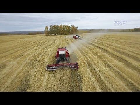 Искитимский район. «Урожай - 2018»
