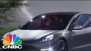 Tesla In Bear Market Territory, No Problem: Pro | CNBC