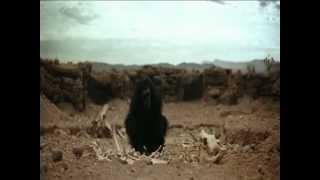 Primeiro Engenheiro - 2001 - Uma Odisseia no Espaço view on youtube.com tube online.