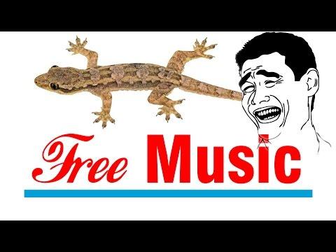 Troll thằn lằn bằng laser & Free Music YouTube