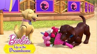 Barbie - Cestou k psíkom