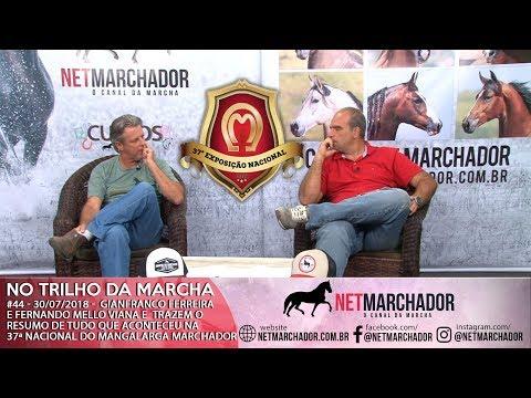 #44 - NO TRILHO DA MARCHA - 30/07/2018 - Resumo completo da  37ª Nacional do Mangalarga Marchador