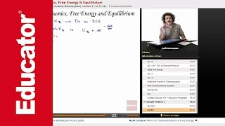 """Thermodynamics, Free Energy & Equilibrium"" 