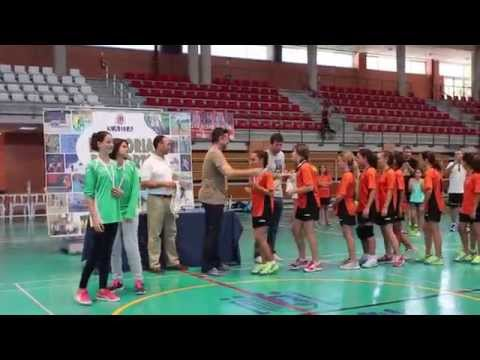 federacion espanola de balonmano femenino: