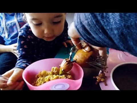 Dabchick STEALS toddlers pudding !