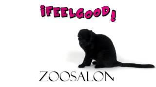 Рекламный ролик Зоосалон Ifilgood