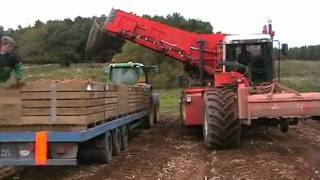 Dewulf RCE3060 Self Propelled Potato Harvester