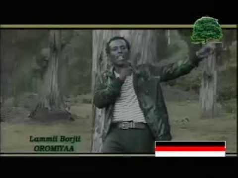 Lammii Borjii - Oromiyaa (Oromo-Oromia)