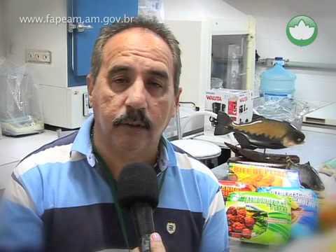 FAPEAM: Produtos à base de peixe amazônico